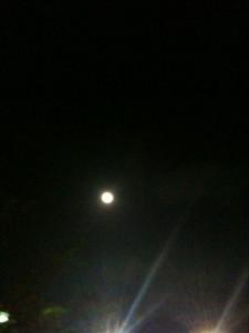 中秋節のお月様!